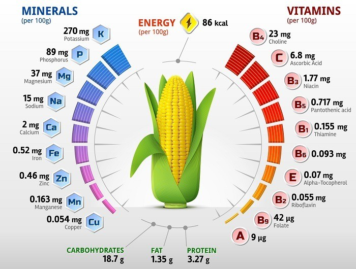 Vitamins and Minerals of Corn