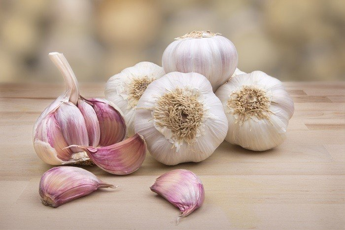 how to tell that garlic is bad