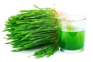 Your Gate To A Healthy Life: Top 5 Best Wheatgrass Juicers in 2017
